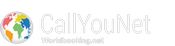 CallYouNet bookings around the world